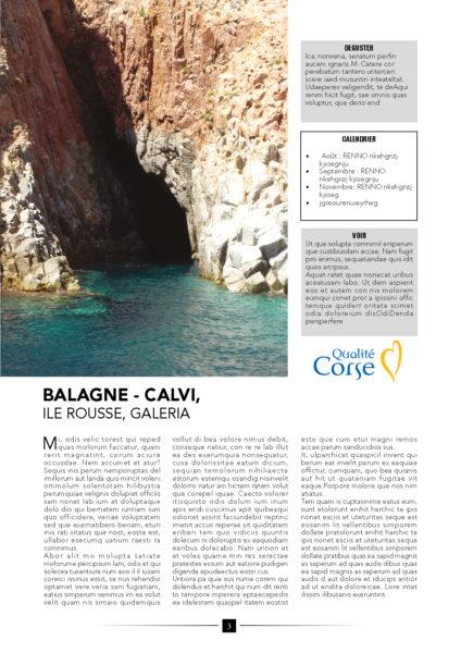 Article Corse3